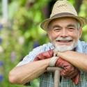 Gartenarbeit im hohen Alter